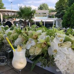 Pentru ca evenimentul tau sa fie unul la superlativ nu ezita sa ne contactezi. Echipa Buchetino este ceea ce cauti🤍💚  Order🌐: www.buchetino.ro Call ☎️: 0720701701 Shop🏠: B-dul Mircea Voda 34, Bucuresti Shop🏠: B-dul Mamaia 62; Constanta ———- ———-  #heartbox #balloons #luxuryflowerboxes #flowerdelivery #luxurygifts #weddinggift #livramzambete #inimadintrandafiri #cutiicutrandafiri #luxuryhotels #surpriseparty #staycolorful #happylife #flowerinstagram #party #buchetinodesign #trandafiricriogenati #tortulbuchetino #wedding #armanddebrignac #buchetinoconstanta #iloveyou #marryme #buchetinoevents #queenofluxuryflowers