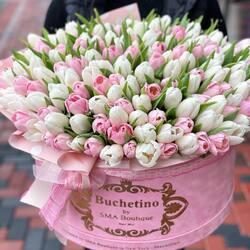 Monday's emotions in a bouquet full of tulip scents🌷🤍🌷  Order🌐: www.buchetino.ro Call ☎️: 0720701701 Shop🏠: B-dul Mircea Voda 34, Bucuresti Shop🏠: B-dul Mamaia 62; Constanta
