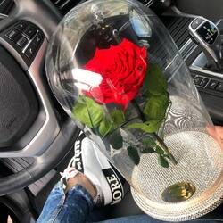 Show him eternal love. Offers a personalized cryogenic rose with Swarovski elements💎  Order🌐: www.buchetino.ro Call ☎️: 0720701701 Shop🏠: Mircea Voda 34