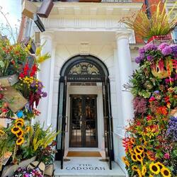 Chelsea in FULL bloom ❤️🇬🇧🌹 @buchetinolondon   #flowers #flowerstagram #flowerdesign #chelseaflowershow #chelseainbloom #britishgarden #postoftheday #visitlondon #flowerfestival #findinglove #pavilionroad #kingsroadchelsea #extraordinary #rshchelseaflowershow #loveflowers #londonlife #prettylittlelondon #mydarlinglondon #doorsofinstagram #pictureoftheday #gardenart #flowerart #floraldecoration